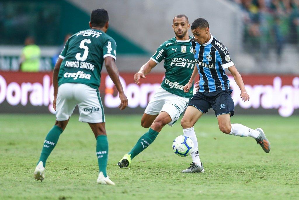 Palmeiras pode oferecer
